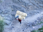 berber woman carrying hay
