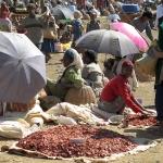 Market Day, Ethiopia