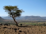 Halfway to Bahir Dar